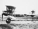 Albatros D.VII.jpg