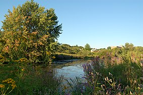 Alewife Brook Reservation.jpg