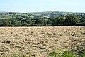 Altarnun, hay field - geograph.org.uk - 511716.jpg