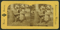 Apple vendor, Boston Common, from Robert N. Dennis collection of stereoscopic views.png