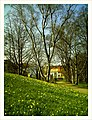 April Botanischer Garten Freiburg - Master Botany Photography 2013 - panoramio (10).jpg
