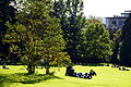 Arboretum Zürich 2013-09-21 16-37-40.JPG