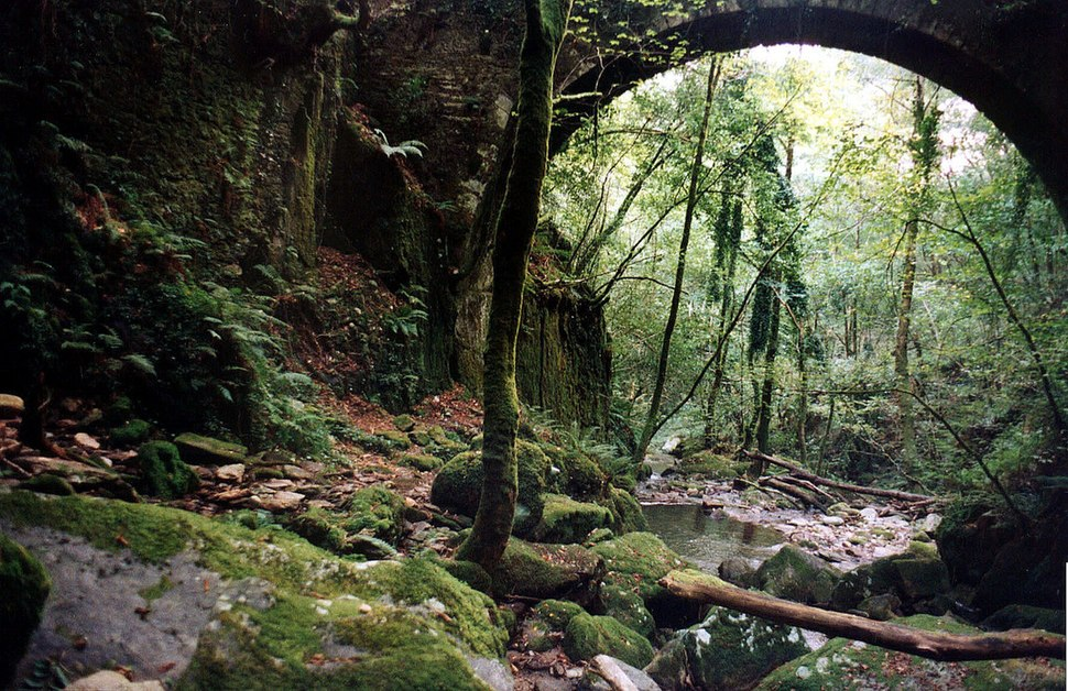 Arco verde - Fragas do Eume