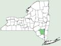 Artemisia umbelliformis NY-dist-map.png