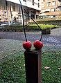 Asten De Lis en de Rode Kersen 1 Bruno Feger.jpg