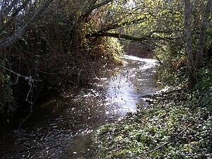 Green Valley Creek - Green Valley Creek below the Atascadero Creek confluence.