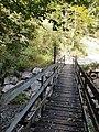 Au-bridge-Graf Salm Steg-06ESD.jpg