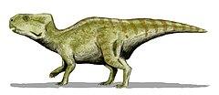 Rekonstrukcja z hipotetycznymi pióropodobnymi strukturami, których pozostałości znaleziono w przypadku innych ceratopsów, psitakozaurów[1]