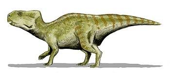 Auroraceratops BW.jpg