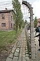 Auschwitz - Barracks - 22.JPG