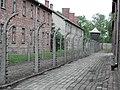 Auschwitz Birkenau German Nazi Concentration and Extermination Camp (1940-1945)-107817.jpg