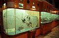 Automotive Electrical Wiring - Transport Gallery - BITM - Calcutta 2000 284.JPG