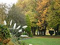 Autumn colours in the park at Chilwell - geograph.org.uk - 1049327.jpg