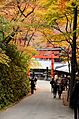 Autumn foliage 2012 (8253640576).jpg