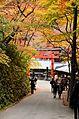Autumn foliage 2012 (8253640576).jpg