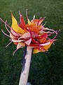 Autumn leaves - 2019-11-04 - Andy Mabbett.jpg
