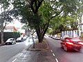 Avenida Dr. Cândido Mota Filho 01.jpg