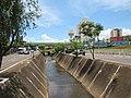 Avenida Dr. Ismael Alonso Y Alonso, Franca (SP), Brasil 13012019.jpg