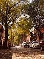 Avenida Francisco Sosa.jpg
