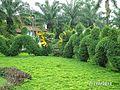 Bửu Long, Bien Hoa, Dong Nai, Vietnam - panoramio (9).jpg