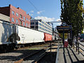 BNSF freight train passing Vine Street streetcar stop in Seattle.jpg