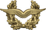 BW Schirmmütze Luftwaffe Hellaltgold.png