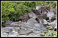Babinda Boulders-08and (4201327536).jpg