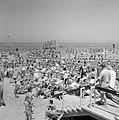 Badgasten in het zand en in het water, Bestanddeelnr 255-1956.jpg