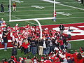 Badgers chopping down goalpost with Paul Bunyan's Axe.jpg