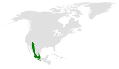 Baeolophus wollweberi distribution map.png