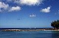 Bahamas 1988 (265) Paradise Island Cove (23456166834).jpg