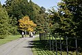 Batsford Arboretum - geograph.org.uk - 1525850.jpg