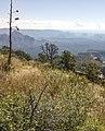 Bear Mountain, Sedona, Arizona - panoramio (76).jpg