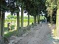 Begraafplaats Garderen (30861828982).jpg