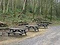 Bestwood Country Park - Picnic area near Alexandra Lodge - geograph.org.uk - 658336.jpg