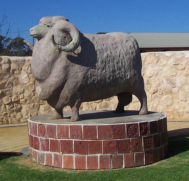 File:Big Ram in Karoonda.jpg