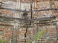 "Biserica Gruita, ""Cruci"", Goiesti, Dolj15.JPG"