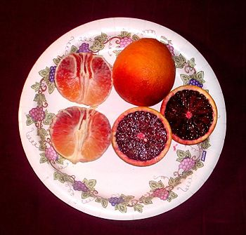 English: A plate filled with blood oranges