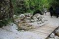 Bosco -Senerchia Oasi naturale Valle della Caccia -Avellino 27.jpg