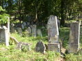 Boskovice-Jewish cemetery8.jpg