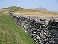 Boundary wall on ridge leading to Diffwys - geograph.org.uk - 2388738.jpg