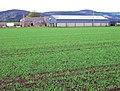 Braigiewell farm, Hill of Fare behind - geograph.org.uk - 729134.jpg