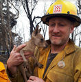 "Brian Stearns saved ""Joey"" in the bushfire.png"