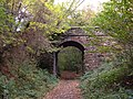 Bridge over Cycle Trail (Former Scarborough to Whitby Railway) - geograph.org.uk - 1547102.jpg