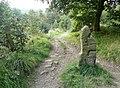 Bridleway, Calf Croft , Hopton, Mirfield - geograph.org.uk - 968664.jpg