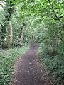Bridleway between Willaston Road and Mill Lane - geograph.org.uk - 1415503.jpg