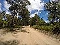 Brooman NSW 2538, Australia - panoramio (142).jpg