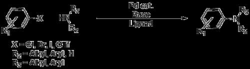Buchwald–Hartwig amination - Wikipedia