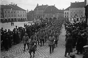 Heimwehr - Heimwehr march in Wiener Neustadt, 1931