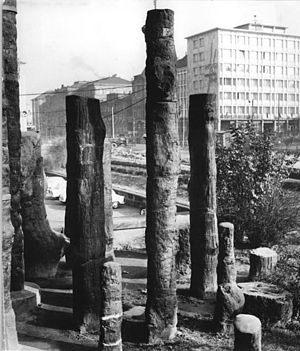 Chemnitz petrified forest - Petrified forest as it appeared in 1964
